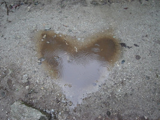 ca ne nous empèche pas d'être sensibles à notre environnement (et de publier la photo la plus cucul du blog!)