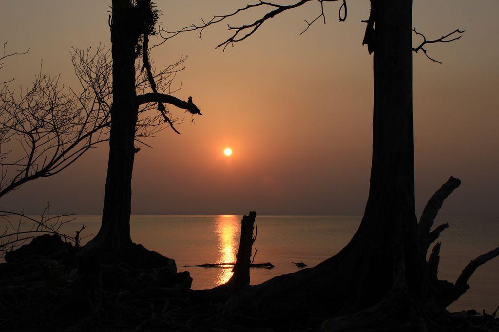 coucher de soleil à Elephant beach