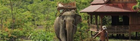 Sur la route de Paksé à Thakhek...
