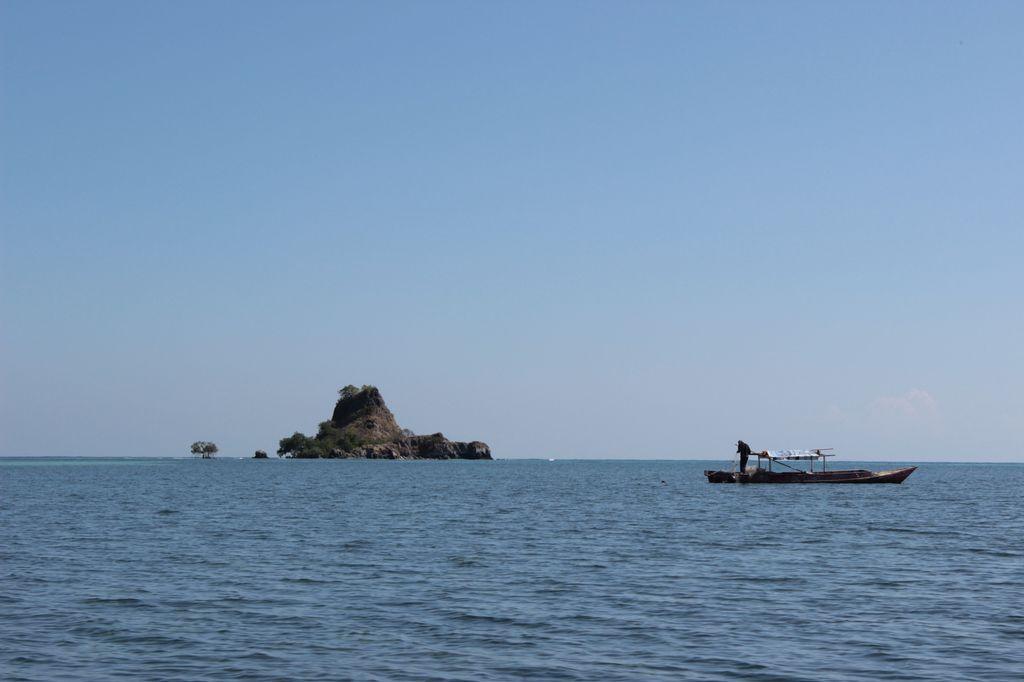 l'île de Tortuga?